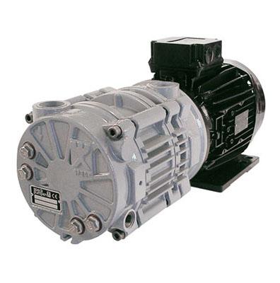 Vz series speck abc uk ltd for 1 stage vs 2 stage vacuum motor